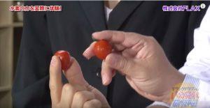 水素発生器トマト比較